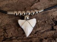 Амулет с зубом  бычьей акулы  с круглыми бусинами