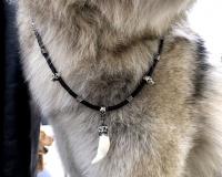 Чокер кожаный толщиной 5 мм с черепами и клыком волка серебро