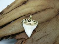 """Кулон-подвеска зуб бычьей акулы с декоративным подвесом """"акула"""" золото 24 карат 5 мкрн"""